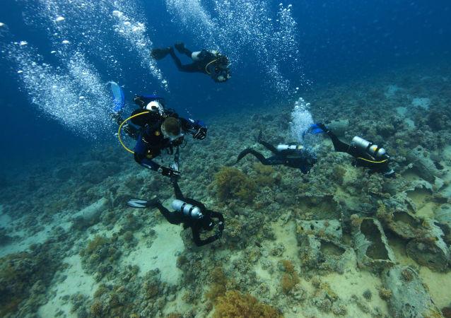 Дайвинг в Красном море на территории Национального парка Рас-Мохаммед
