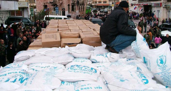 俄国防部:俄军运输机已从法国向叙利亚运送40余吨人道援助物资