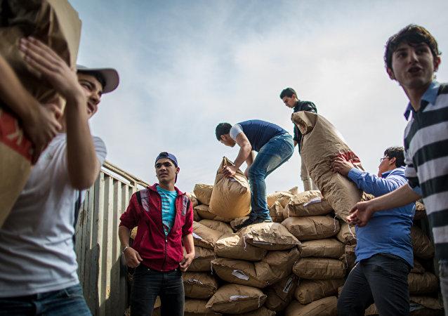 俄聯邦國防部:8.5噸人道主義物資運抵敘利亞哈馬省與拉塔基亞