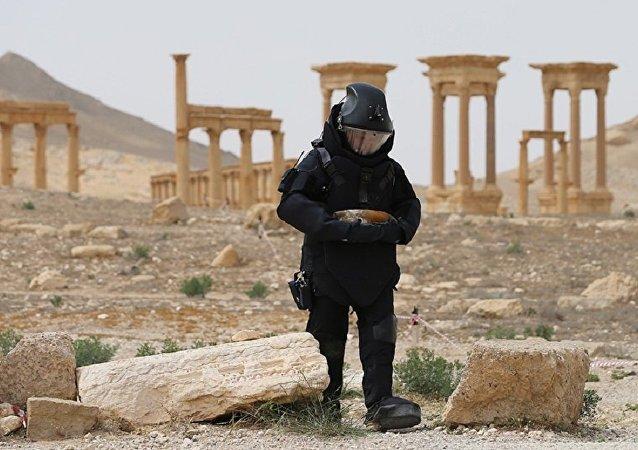 俄議員否認媒體有關俄私企將參與敘利亞排雷工作的報道