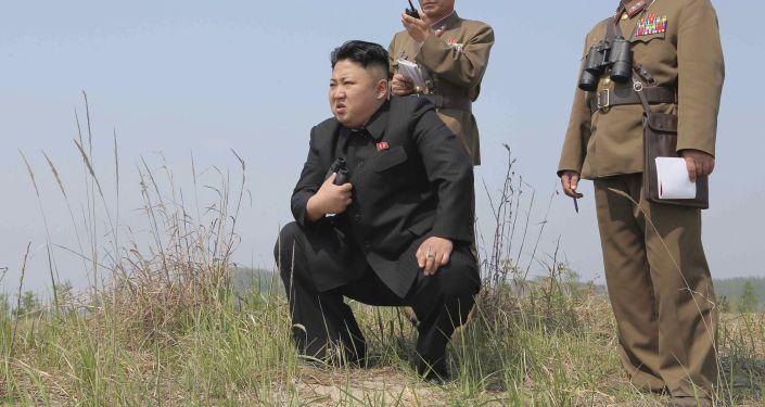 俄專家:朝鮮15日試射的或為「舞水端」導彈