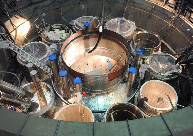 俄原子能集团拟吸引中资筹建远东核电中心