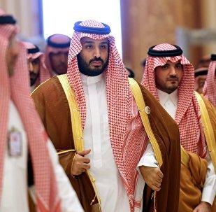 普京在會見沙特王儲時計劃討論與歐佩克的協議問題