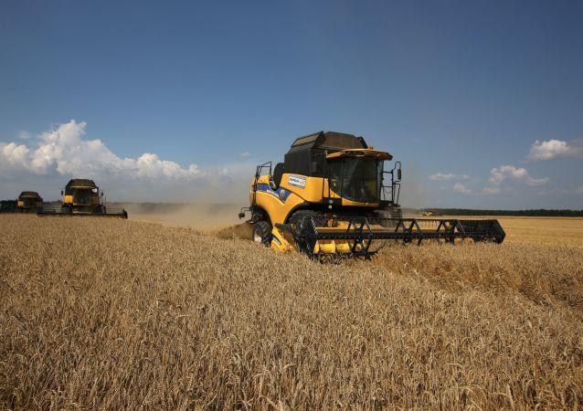 俄羅斯本農業年對華糧食出口量創紀錄達12萬噸