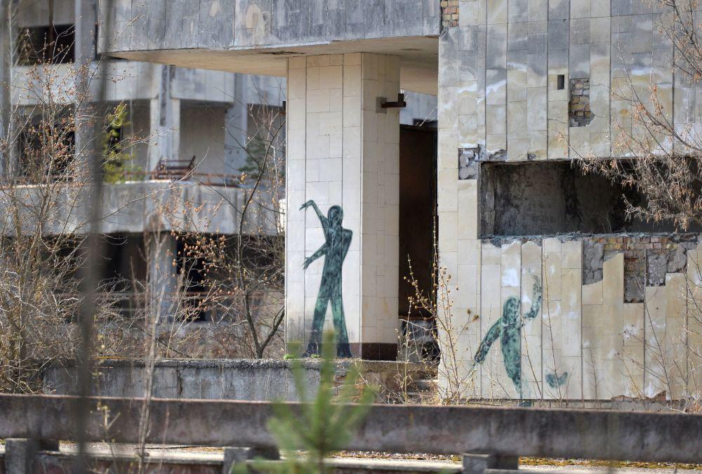 在发生事故后,在被疏散的普里皮亚季镇