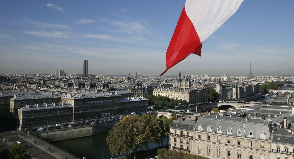 法大使:法國從敘利亞撤軍的問題還在討論中