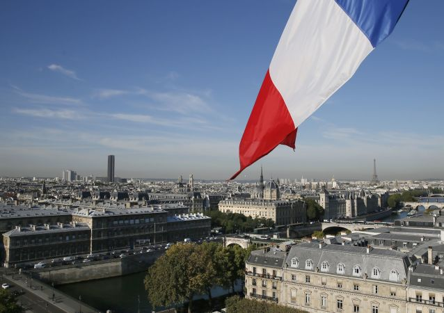 法大使:法国从叙利亚撤军的问题还在讨论中