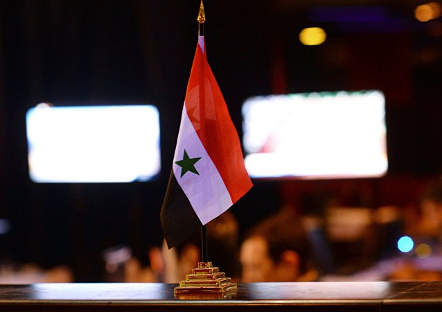 普京:俄土伊三国就启动叙利亚宪法委员会取得进展