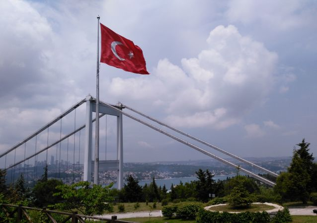 土耳其9月28日至10月8日在地中海与包括美国在内的多国进行演习