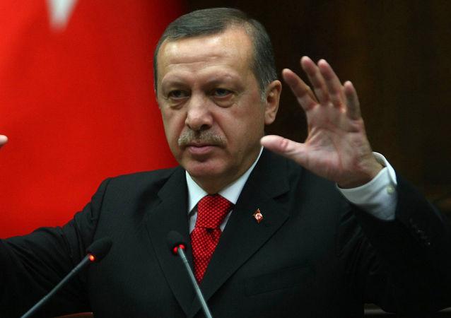 土總統:土耳其接收難民的開銷達到200億美元