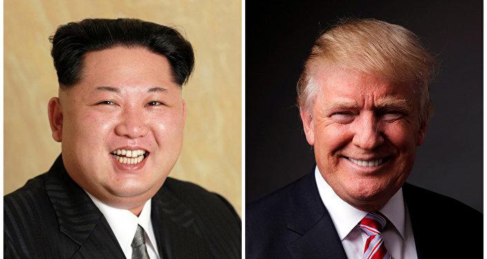 专家:特朗普取消朝美首脑会晤是由于准备不足 但双方对话的大门并未关上