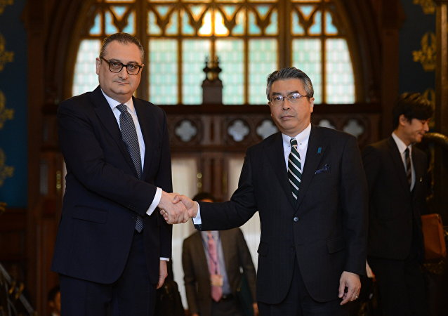 俄副外長:俄日就有關和平條約的副外長級別會談將於6月在東京舉行