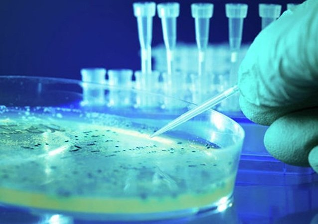 科學家揭示細菌上太空後的變化