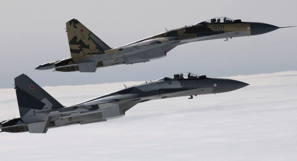 俄外交部:莫斯科未与巴基斯坦就出售苏-35战机问题谈判