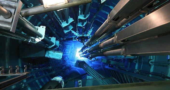 專家:俄將在五年內展示未來快中子反應堆的技術優勢