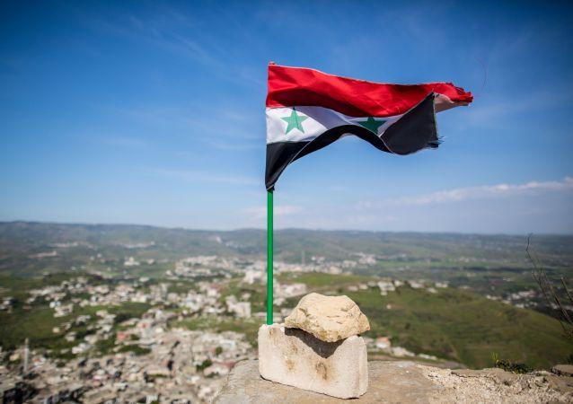 阿斯塔納談判敘反對派代表:反對派將討論鞏固停火問題