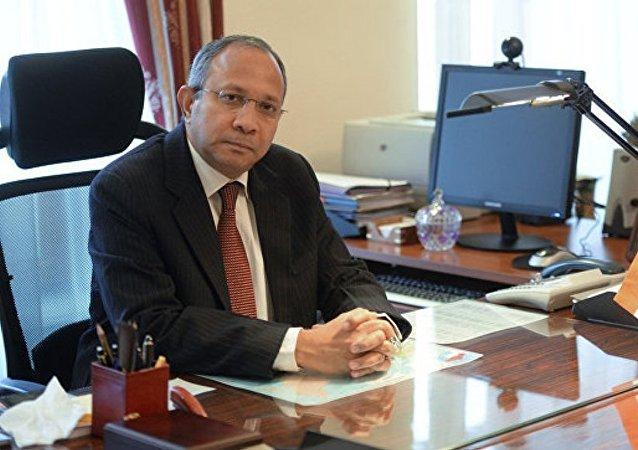 """俄驻印大使:俄方愿支持印中有关""""一带一路""""倡议对话"""