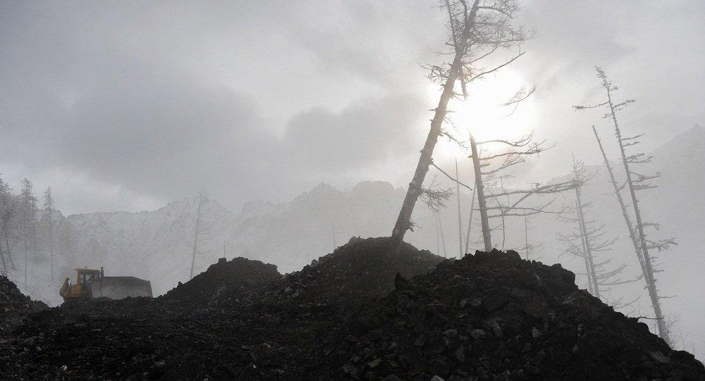前三季度绥芬河口岸俄罗斯煤炭进口额同比增长近7倍