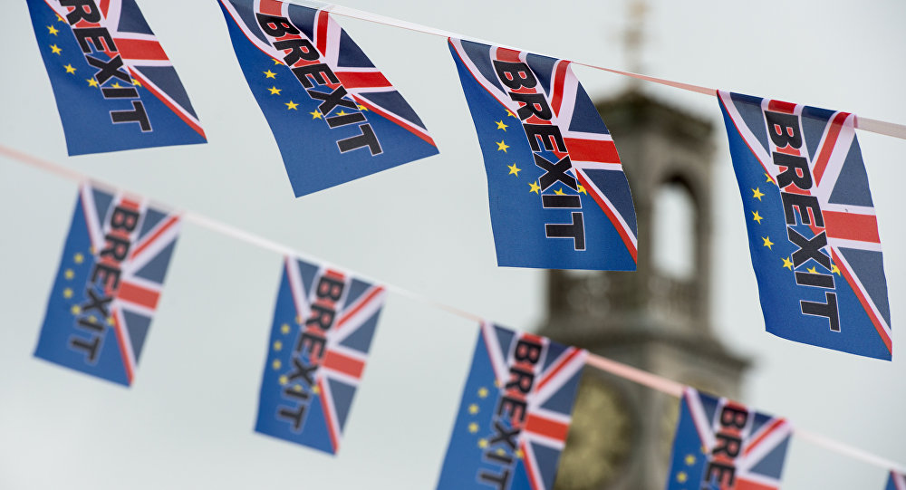 《卫报》:一英国商人为脱欧公投捐出100万欧元