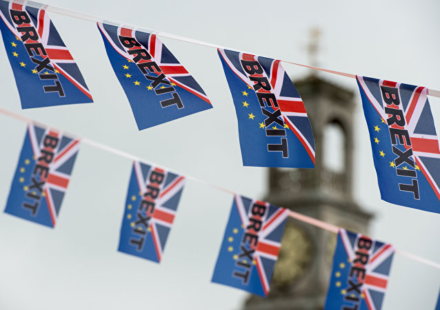 英外相称伦敦脱欧后与欧盟关税伙伴关系提议疯狂