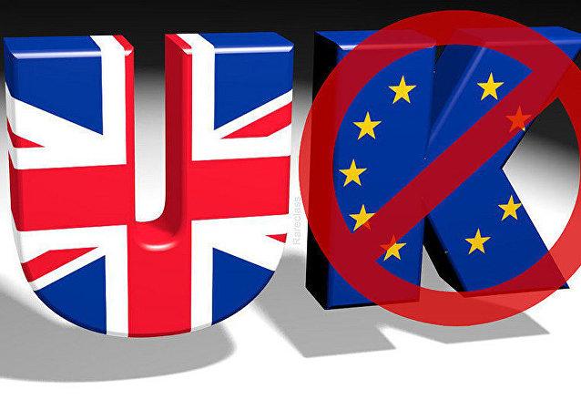 """俄前财长:""""英国脱欧""""将让欧盟从第二大经济体下滑到第三"""