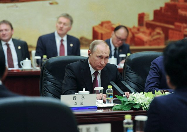 普京在大范围会谈上建议划定双边关系优先发展方向