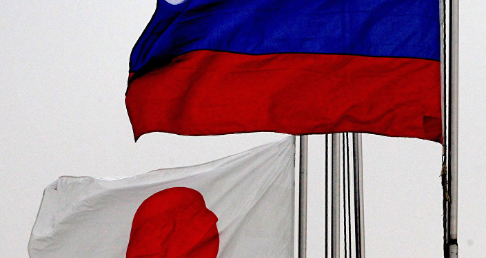 专家:东京把日俄和平条约与赔偿问题挂钩 但目前就赔偿问题发表评论不合时宜