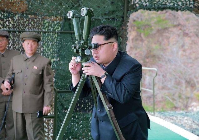 媒体:金正恩称发射导弹是对美韩军演的回应