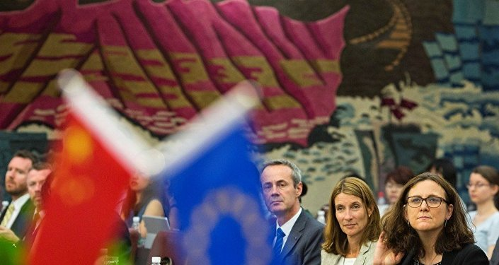 专家:欧盟在应对中国市场经济地位问题上寻求平衡