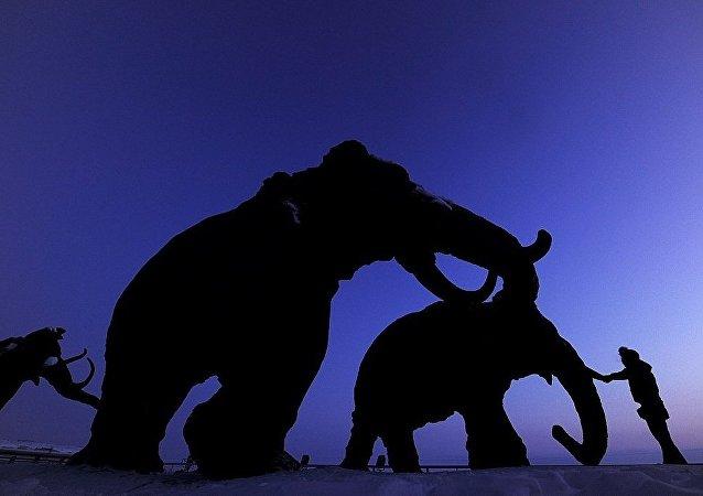 中國公民企圖從俄羅斯運出240片猛獁象牙碎片