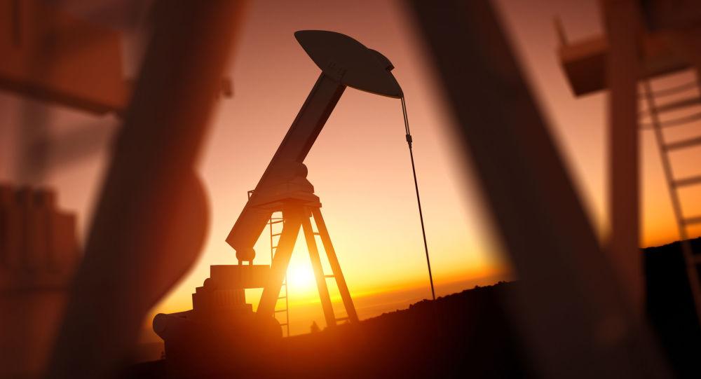 俄能源部長:歐佩克+委員會建議考慮將石油日產量提高100萬桶