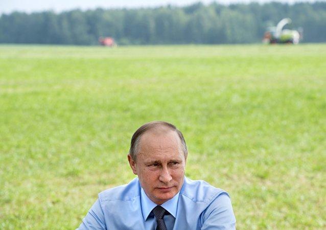 民调:大部分俄罗斯人认为普京主要功绩是强化军队和俄世界地位