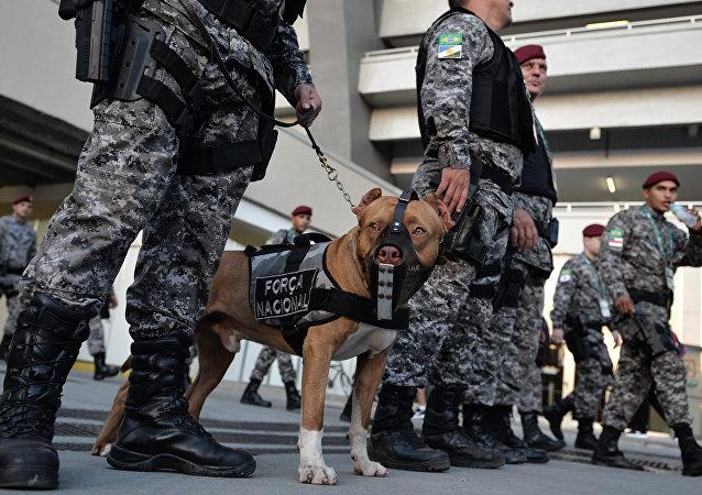 巴西警察(资料图片)