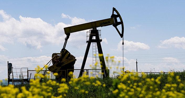专家:推出人民币原油期货将促进俄中双边贸易增长