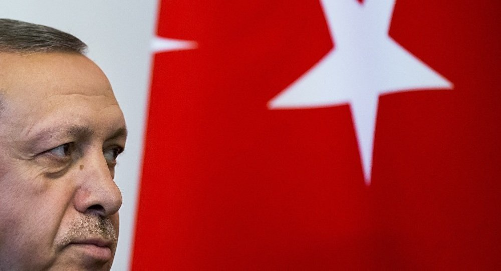 埃尔多安:土耳其军队准备加入叙利亚伊德利卜战斗