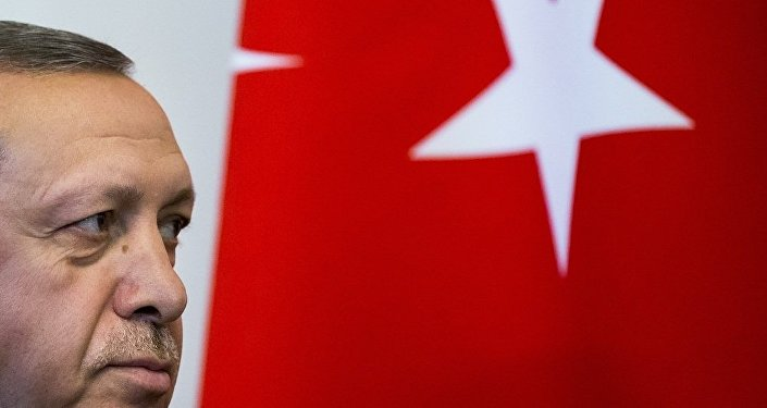 埃尔多安:土耳其对西方仍是二流国家