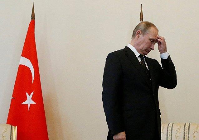 俄專家:俄羅斯和土耳其必須首進行政治互動