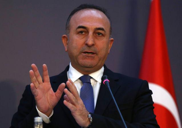 媒体:土耳其外长与美国务卿讨论了引渡葛兰的问题
