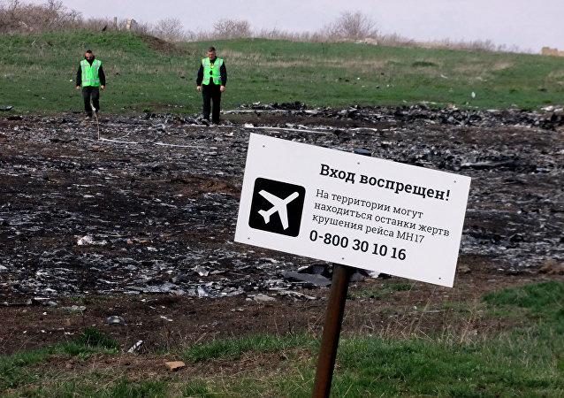 馬航МН17墜機事件的調查初步結果將於9月28日公佈
