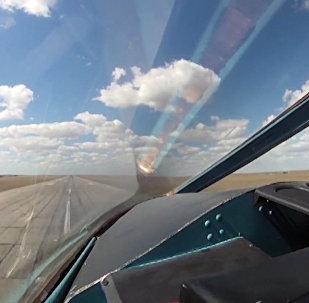 普京介绍俄战机如何保障其访叙之行安全