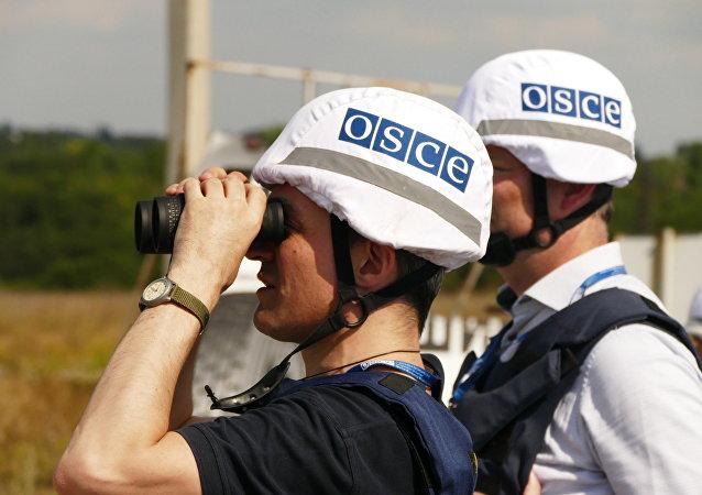 歐安組織:工作組稱頓巴斯必須從8月31日午夜無限期停火