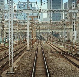 建設通往中國鐵路應當符合環保標準