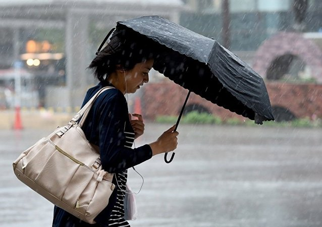 日本因颱風雲雀取消152架航班