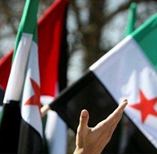 敘利亞聯合反對派要求盡快與敘政府直接對話