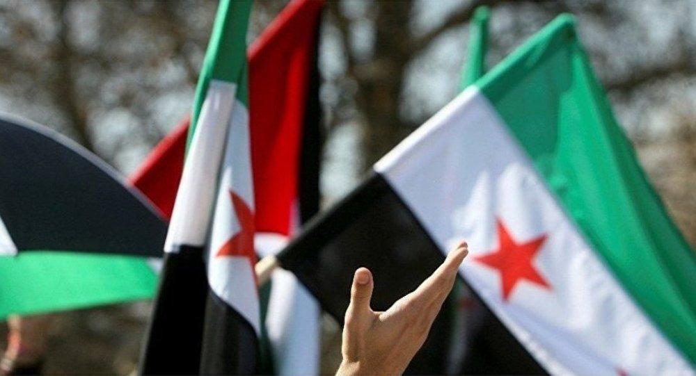 叙利亚联合反对派要求尽快与叙政府直接对话