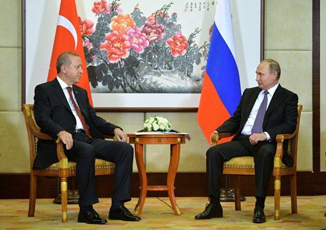 普京計劃與埃爾多安在杭州討論恢復俄土全面合作問題