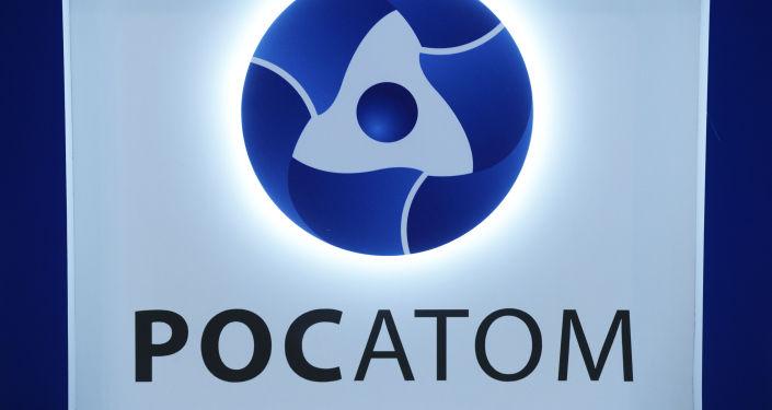 俄原子能公司计划今年签署埃及核电站场地筹备合同