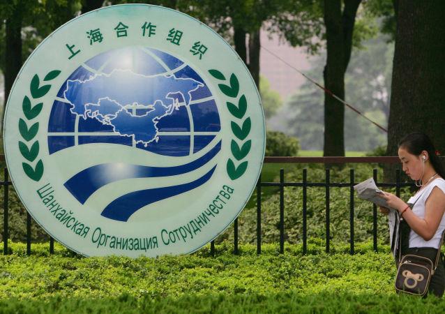 中国国家主席:中方将主办上海合作组织首届媒体峰会
