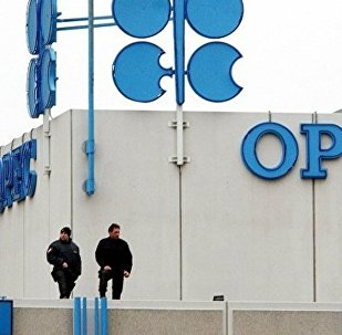 歐佩克希望俄羅斯每日削減石油產量30萬桶