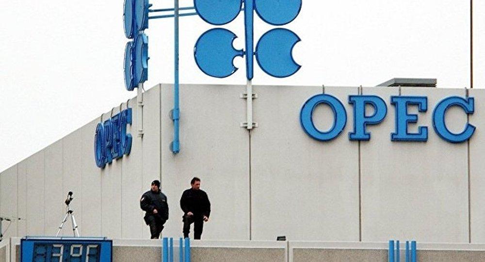 美政府請求歐佩克將石油日產量提高至100萬桶
